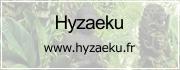 Le site de l'association Hyzaeku